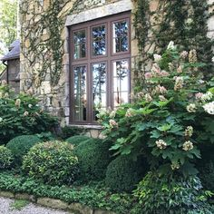 It's time to escape to the mountains for some cool air. You all know how much I love a good garden or home tour to find new idea… Boxwood Garden, Hydrangea Landscaping, Home Landscaping, Front Yard Landscaping, Amazing Gardens, Beautiful Gardens, Landscape Design, Garden Design, Classic Garden