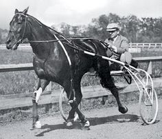 Dan Patch, America's greatest pacer. Wow, I had read a book about him and the whole time thought he was made-up!