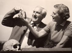"My FOSSILS were discovered in 1960 by Mary and Louis Leakey at Olduvai Gorge in Tanzania, Africa!  Mann, Alan, and Janet Monge. ""Homo Habilis."" Grolier Multimedia Encyclopedia. Grolier Online, 2015. Web. 5 Nov. 2015."