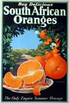 Vintage Poster:  South African Oranges, 1930s - original vintage poster by Chas Shiers listed on AntikBar.co.uk
