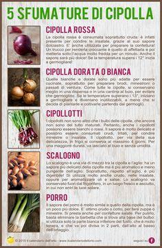 5 Sfumature di cipolla