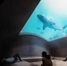Ozeanium Zoo Basel, Morger + Dettli - BETA