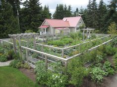 How to Keep Animals Out of Your Garden—An artfully designed double fence keeps deer from jumping into the vegetable garden and also provides an attractive trellis for climbing plants.