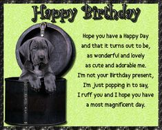 """Birthday wishes for someone you """"Ruff""""! Free online Cute And Adorable Birthday Wishes ecards on Birthday Birthday Hug, Birthday Wishes Funny, Birthday Songs, Very Happy Birthday, It's Your Birthday, Beautiful Birthday Messages, Birthday Fireworks, Have A Happy Day, Big Hugs"""