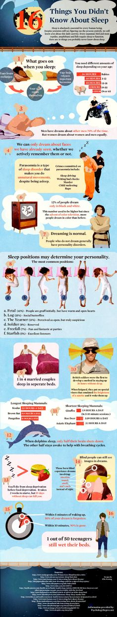 16 Amazing Facts About Sleep That Will Surely Impress You -You need to sleep every day and sleeping is so important to you that lacking it could shorten your life. But I guess you didn't really know much about sleep until you read this, right? Some of the facts about sleep really surprised me! I hope you've learnt something new about sleep from this infographic.