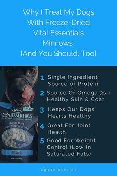 74 Best Vital Essentials Images On Pinterest Essentials Dog
