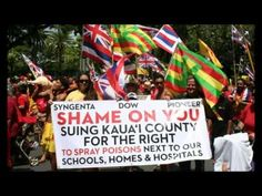 Hawaii's Spike In Birth Defects Puts Focus On GMO Crops - YouTube
