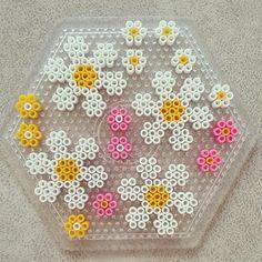 Flowers perler beads by pixelart_shop Perler Bead Designs, Hama Beads Design, Diy Perler Beads, Perler Bead Art, Pearler Beads, Fuse Beads, Melty Bead Patterns, Pearler Bead Patterns, Perler Patterns