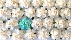 DIY Supplies, Handmade Paper Flowers in 22 Custom Colors for Wedding DIY Projects & Crafts