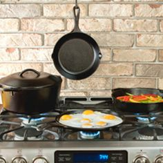 Lodge : Seasoned Cast Iron