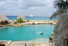 Cozumel, Mexico #cozumel #mexico #vacations