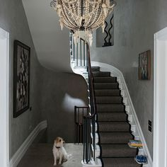 Grey eclectic hallway with chandelier | Decorating