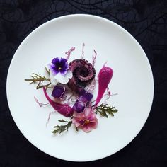 Octopus, purple cabbage, butterfly pea flower jelly, mizuna and viola flower