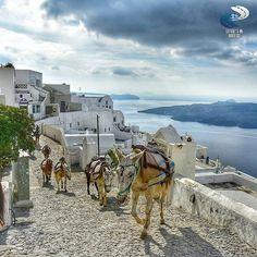 Fira, Greece #fira #santorini #greece . ★by@georgezanetis .