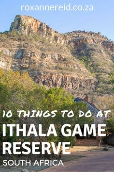 Visiting Ithala Game Reserve in KwaZulu-Natal in South Africa and wondering what to do there? Here are 16 things to do in Ithala, from walks to game drives, Ithala accommodation, picnic sites and viewpoints. Game Reserve South Africa, All About Africa, Wildlife Safari, Kwazulu Natal, Slow Travel, Kruger National Park, Group Travel, African Safari, Africa Travel