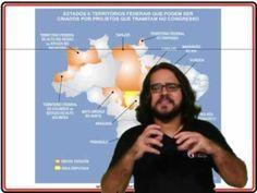 Aula 01   Organização Político Administrativa do Brasil