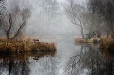 fishing lake in hungary looks frozen in time 6 This Hungarian Fishing Lake Looks Frozen in Time (11 Photos)