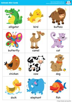 "Set of 38 mini flashcards to go with the ""Super Simple Songs – Animals"" CD. Great for classroom or at-home games. Set of 38 mini flashcards to go with the ""Super Simple Songs – Animals"" CD. Great for classroom or at-home games. Learning English For Kids, Kids English, Toddler Learning, Preschool Learning, English Lessons, Teaching English, Learning Activities, Preschool Activities, Excel Tips"