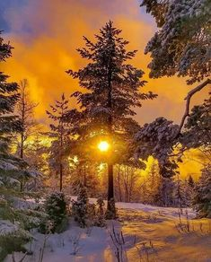 Winter Photography, Landscape Photography, Nature Photography, Winter Sunset, Winter Scenery, Winter Pictures, Nature Pictures, Beautiful Places, Beautiful Pictures