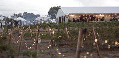 Inspiration for Mackenzie and Nathan's wedding at Eagle's Ridge farm. Emergency Response, Farm Wedding, Shed, Inspiration, Ravens, Biblical Inspiration, Raven, Crows, Barns
