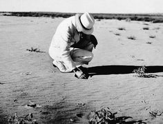 Rexford G. Tugwell, rural resettlement administrator and member of the U.S. presiden'ts drought commission, scoops a handful of loose sand which covers what was once a prosperous farm near Dalhart, Texas, Aug. 20, 1936 during the Dust Bowl. (AP Photo) #