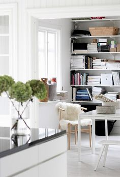 great idea - maybe convert a closet for more office storage?