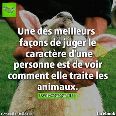 Sent from my BlackBerry Daily Positive Affirmations, Positive Thoughts, Happy Quotes, Best Quotes, Respect Life, Quote Citation, Image Fun, French Quotes, Did You Know