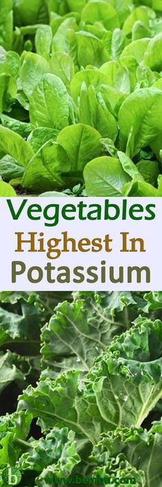 Eat more of these high potassium vegetables to increase your daily potassium consumption… Health Tips │ Health Ideas │Healthy Food │Health │Food │Drinks │Healthy Oil │Healing │Natural Remedies #Health #Ideas #Tips #Healthyfood #Food #Vitamin #Healing #Drinks #Remedies #Healthyoil
