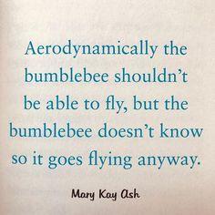 Fly like a bumblebee