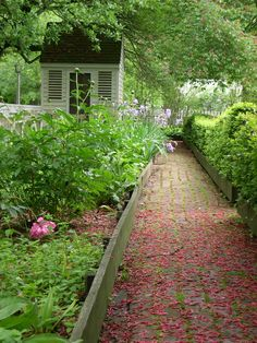 Strewn foliage underfoot: so pretty...Colonial Williamsburg pathway