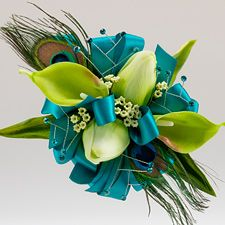 """Peacock Passion"" 