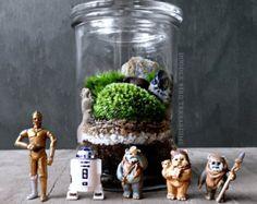 Efecto invernadero musgo terrarios con escena de por DoodleBirdie