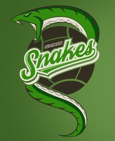 Hogwarts Quidditch: Slytherin Snakes