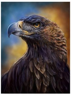 Trademark Global Patrick Lamontagne Golden Eagle Illustration Canvas Art - 37 x 49 Eagle Pictures, Animal Pictures, Eagle Images, Animals And Pets, Cute Animals, Eagle Wallpaper, Vogel Tattoo, Eagle Painting, Eagle Art