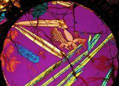 NWA 3358 meteorite thin section viewed through a polarizing microscope