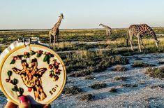 Bordado de safari en Etosha, Namibia