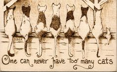 Cats.......jo [at] firestarterpyrography [dot] com   unique on wood and leather..