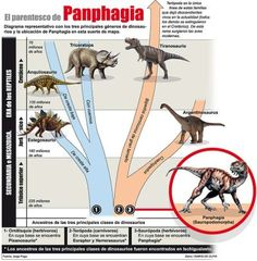 Argentina Discovery - Argentina prehistoric land of dinosaurs