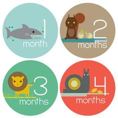Little Pet Detective Monthly Tummy Stickers
