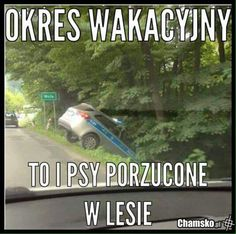 Wtf Funny, Funny Memes, Hilarious, Why Are You Laughing, Polish Memes, Weekend Humor, Best Memes, Creepy, Lol
