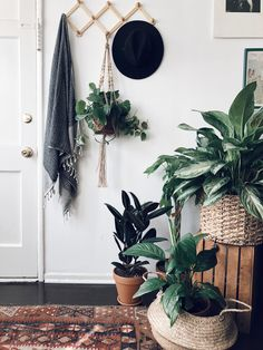 Homedecor, interior design, Turkish towels, Bohemian home decor, urban jungle