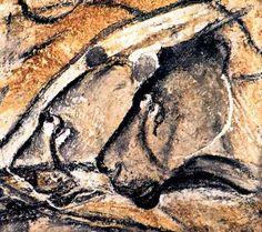 Deux têtes de lions, peintures préhistoriques, Grotte Chauvet. Chauvet Cave, Paleolithic Art, Art Rupestre, Cave Drawings, Art Antique, Sky Art, Human Art, Indigenous Art, Aboriginal Art