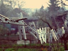 Clothes-pins by Kata Mohai on 500px