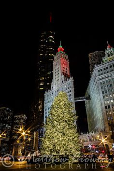 Trump Tower, the Wrigley Building and the Mag Mile Christmas Tree, N Michigan Ave, Chicago, Illinois