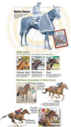 Native Dancer influence. The best & worst bloodline in racing. The best because of how many runners it has produced. The worst because of terrible inbreeding and fragile bones.