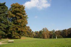 Bilder von einer Malreise auf der Insel Rügen   Sonniger Herbst im Park von Putbus (c) Frank Koebsch (5)