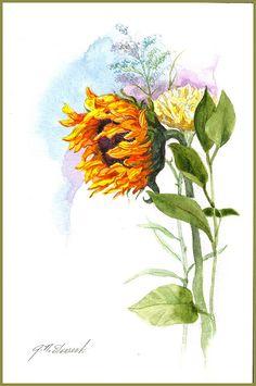 Watercolor of a Sunflower by jonarte on Etsy