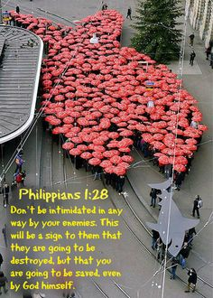 Philippians 1:28 Don't be intimidated in any way by your enemies. This will be a sign to them that they are going to be destroyed, but that you are going to be saved, even by God himself.