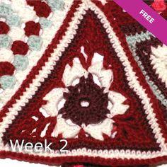 Patons Wool DK Crochet Along: Week 2 tutorial