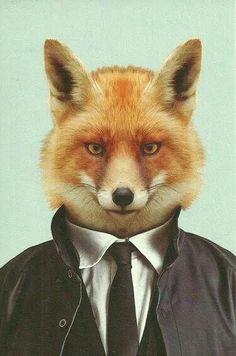 Fox : Anthropomorphism / Anthropomorphisme / Anthropomorphic